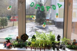 Огородик в детском саду