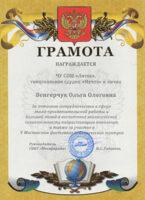 ds-diploma-vengerchuk